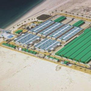 Instalación Desaladora de Agua de Mar Al Taweelah